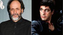 Luca Guadagnino dirigirá el reboot de Scarface